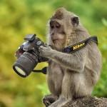 Mẹo nhỏ khi chụp ảnh du lịch